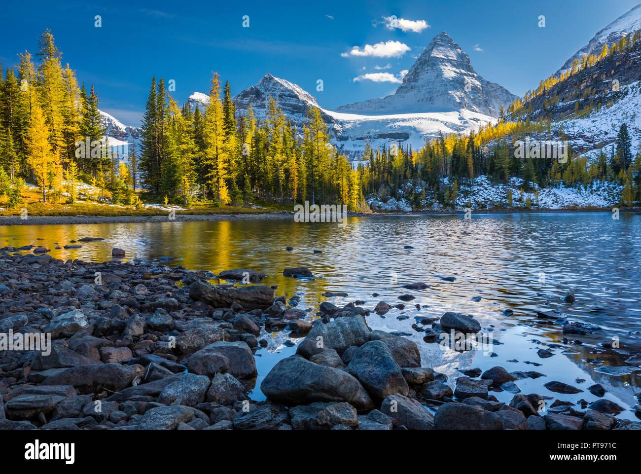 Monte Assiniboine Provincial Park es un parque provincial en British Columbia, Canadá, situado alrededor del monte Assiniboine. Foto de stock