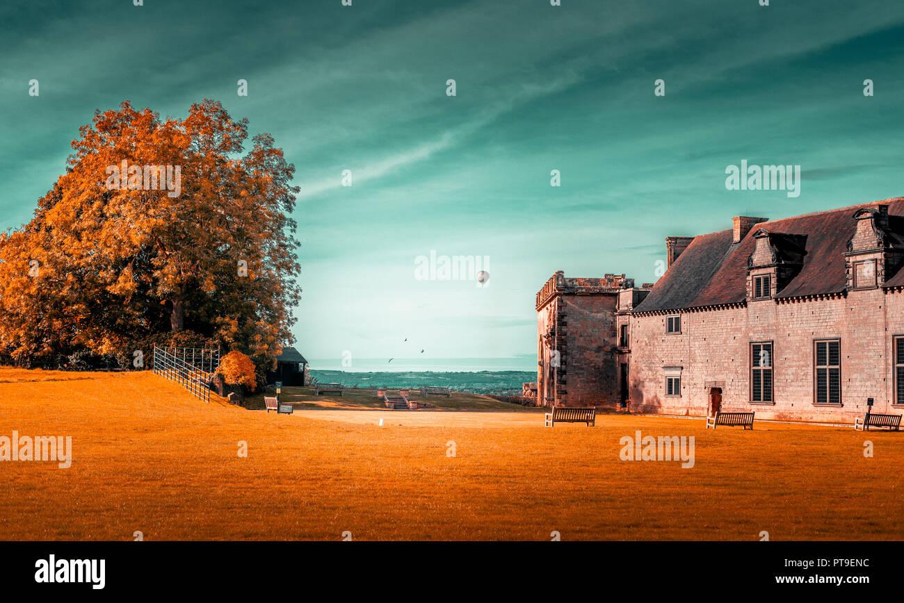 Un gran árbol y un viejo edificio contra un cielo azulado sentado en la hierba naranja en otoño el clima. Foto de stock