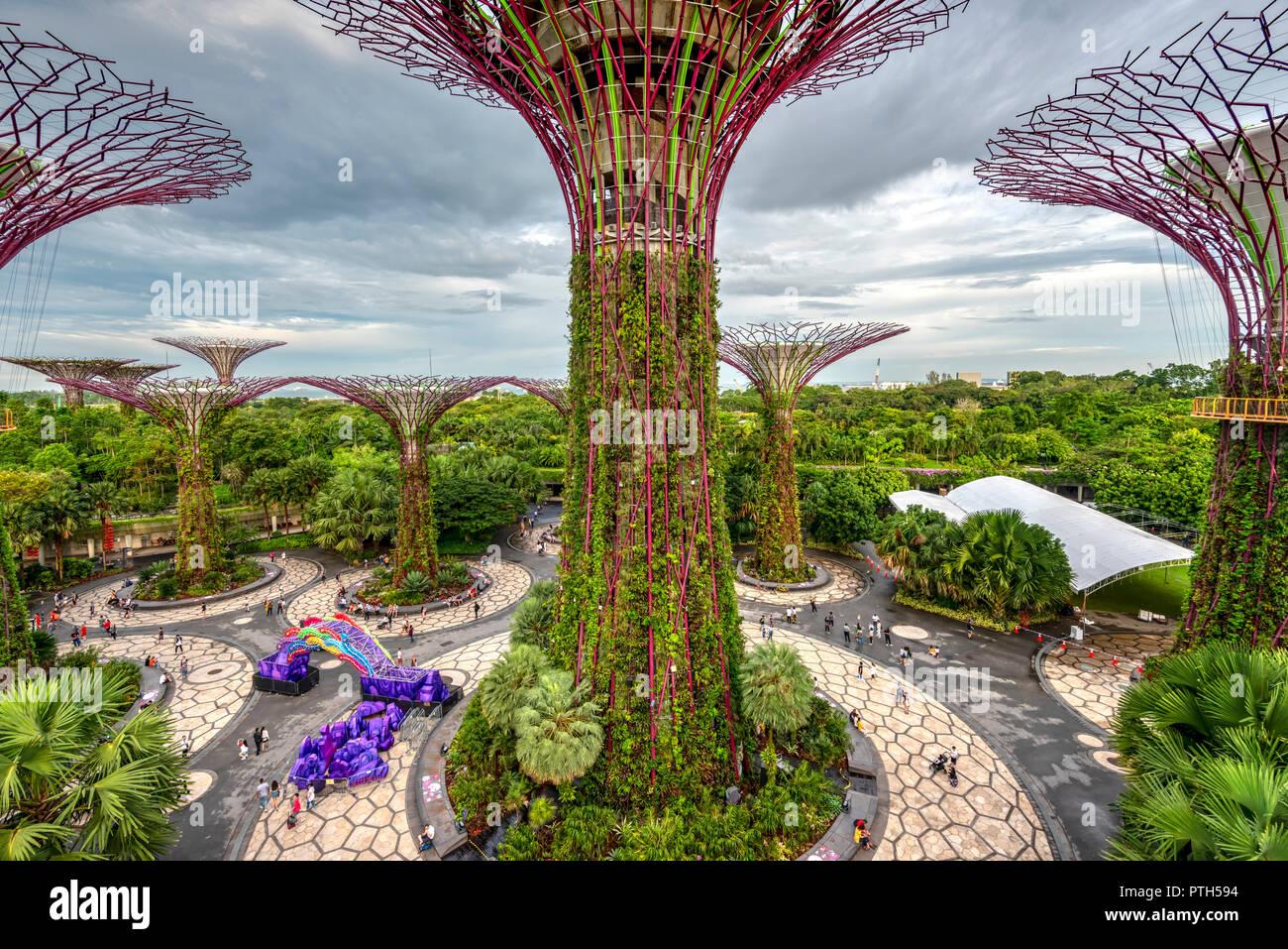 La Supertree Grove en jardines por el parque natural de la Bahía de Singapur Foto de stock