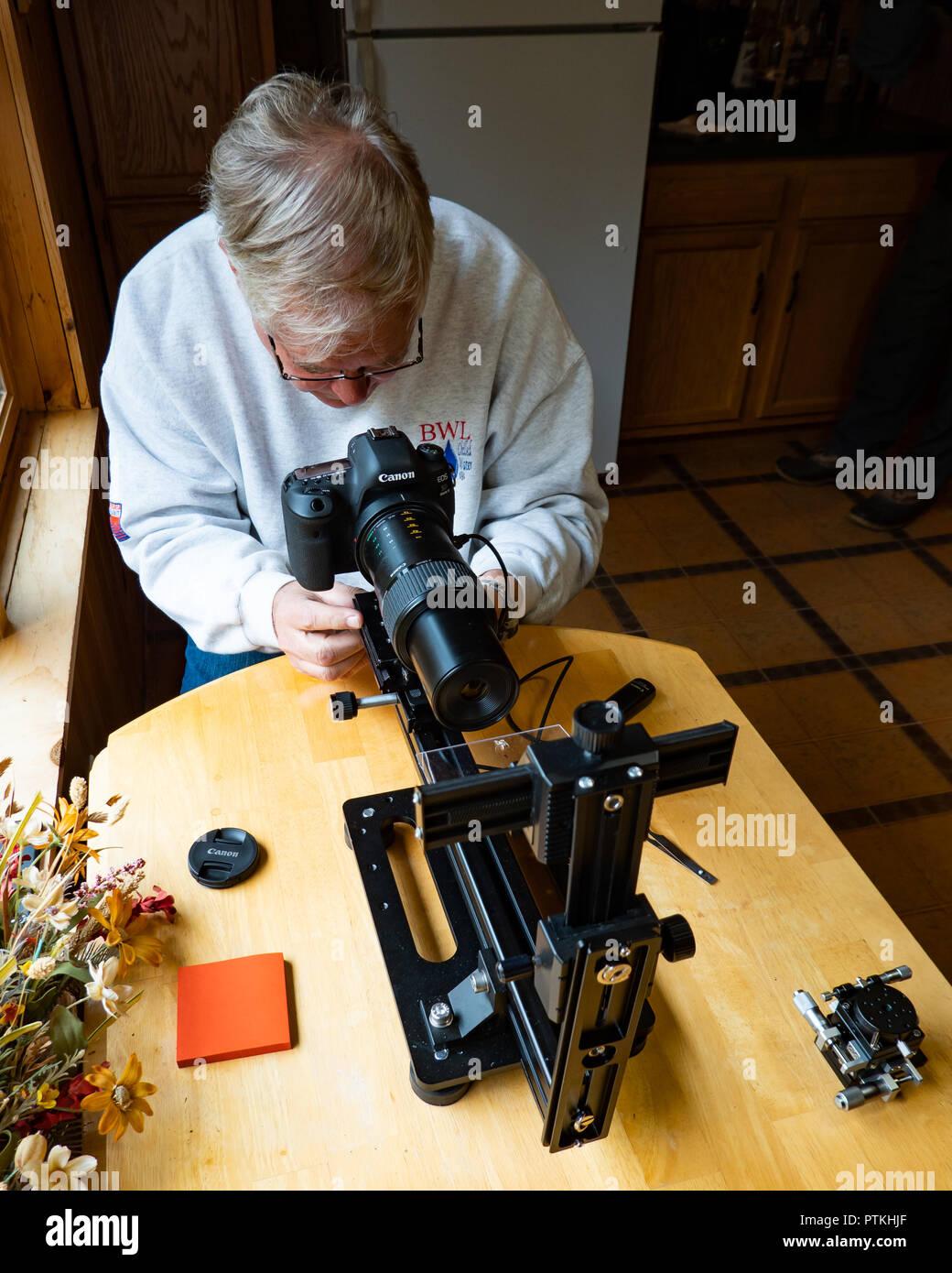 Un fotógrafo senior demostración de técnicas para fotografiar insectos pequeños con una cámara digital Canon y lentes. Imagen De Stock