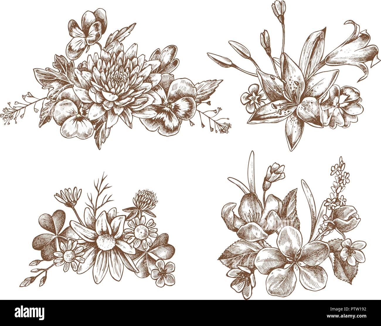 Colección de vectores dibujados a mano flores de otoño Ilustración ...