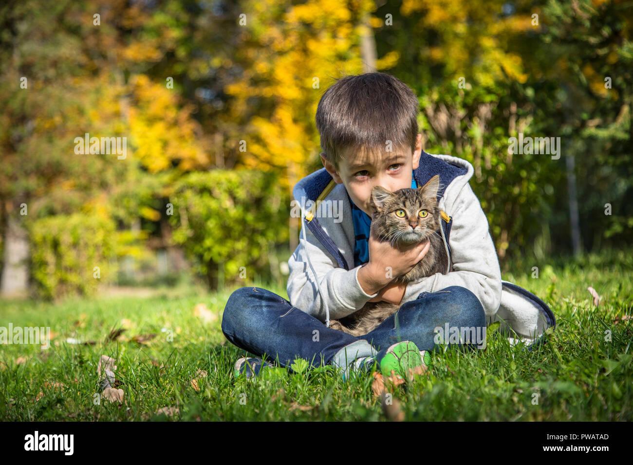 Feliz chico en el parque de otoño con pet gatito. Foto de stock