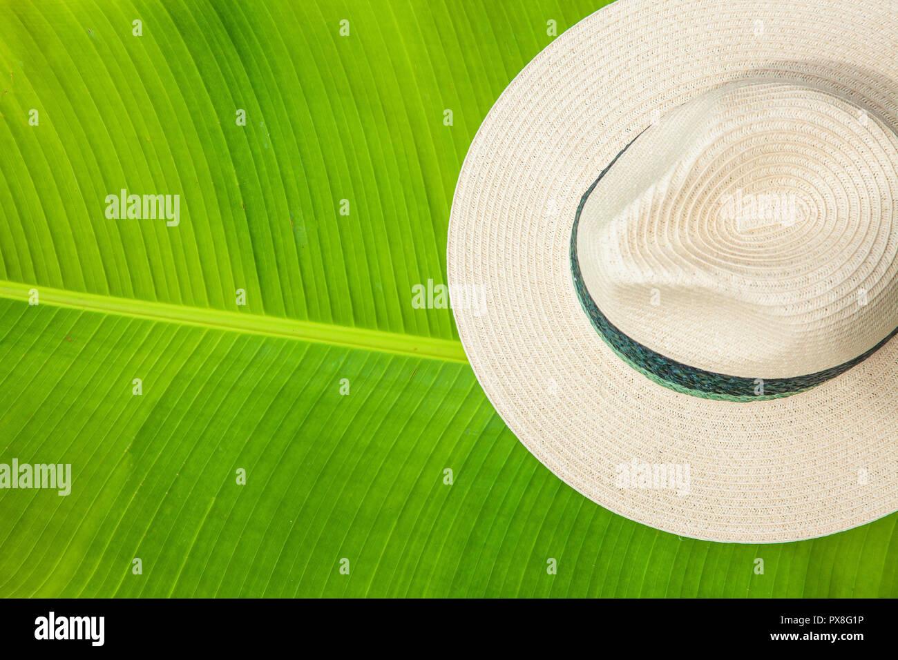 Palm Leaf Hat Imágenes De Stock   Palm Leaf Hat Fotos De Stock - Alamy ddfec27955a