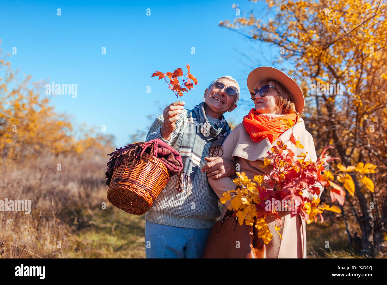 Las parejas ancianas caminar en otoño del bosque. Hombre de mediana edad y la mujer abrazándolo y escalofriante al aire libre. Gente hablando y disfrutar de la naturaleza Foto de stock