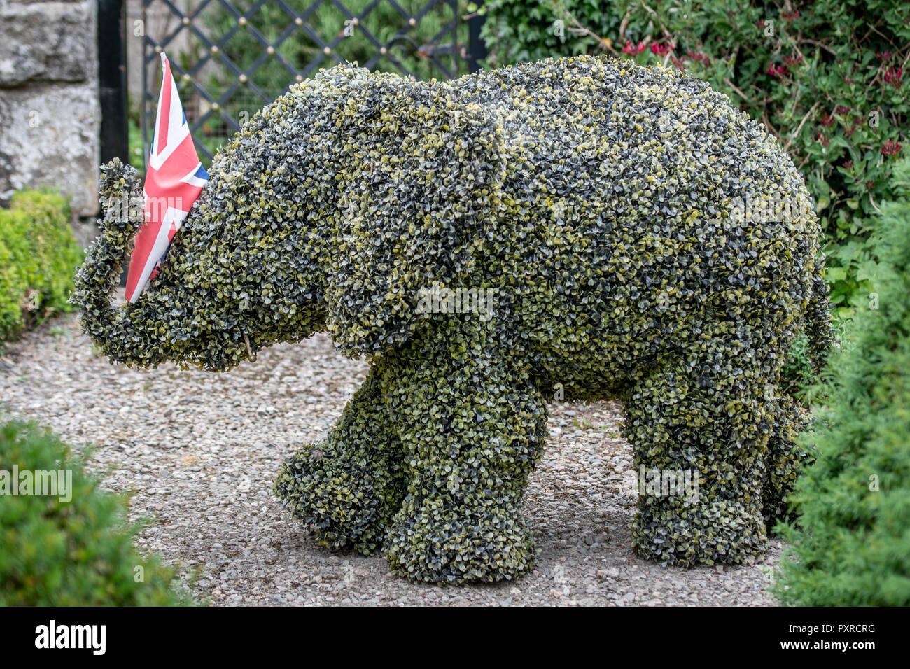 Elefante Stockamp; Fotos Seto Imágenes De Nmwv8n0