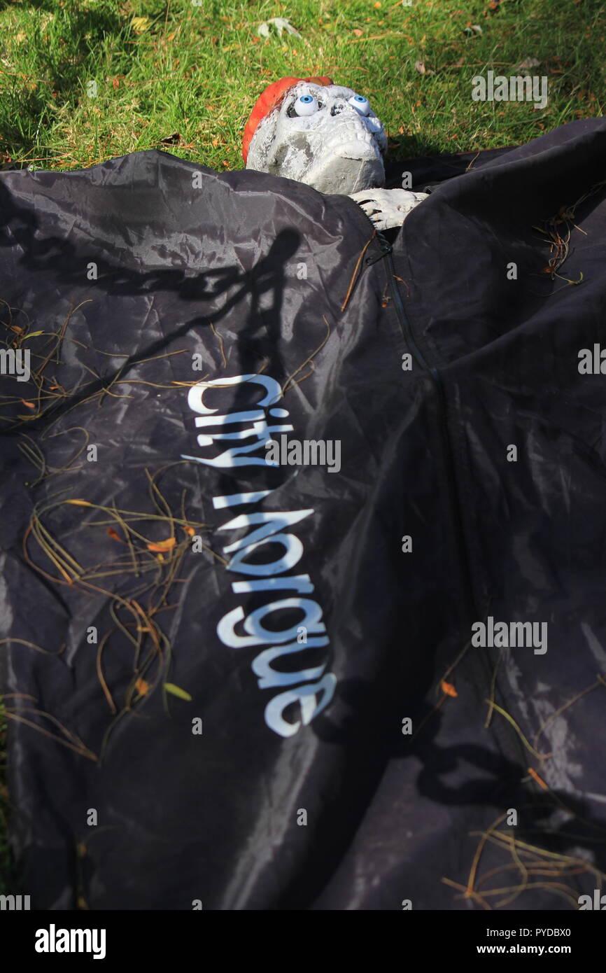 """Esqueleto muerto cuerpo humano envuelto en un cuerpo negro bolso con 'Ciudad Morgue"""" escrita en la frente como creative halloween decoraciones de césped. Imagen De Stock"""