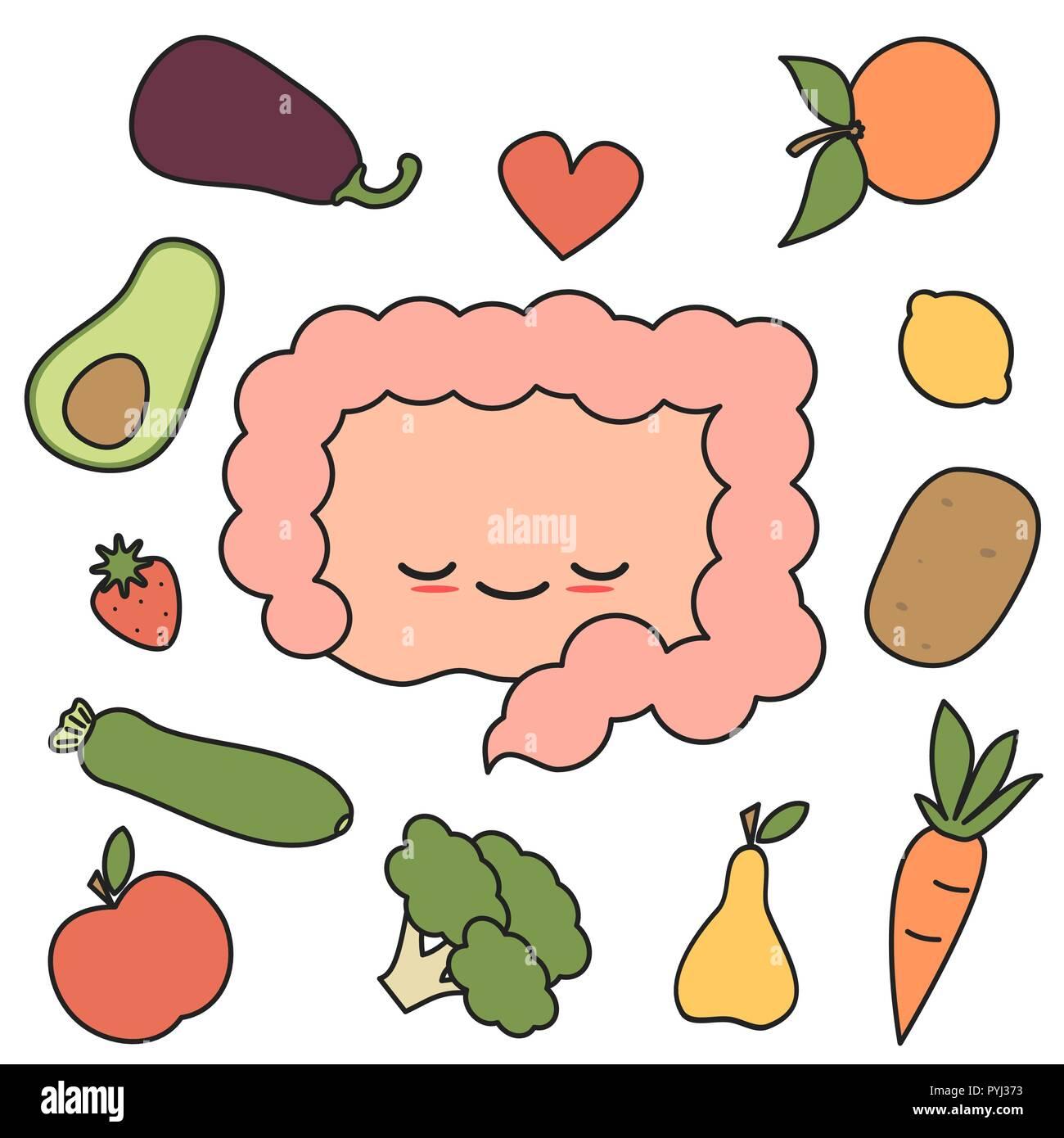 Cute Dibujos Animados Intestino Feliz Y Saludable Con Frutas