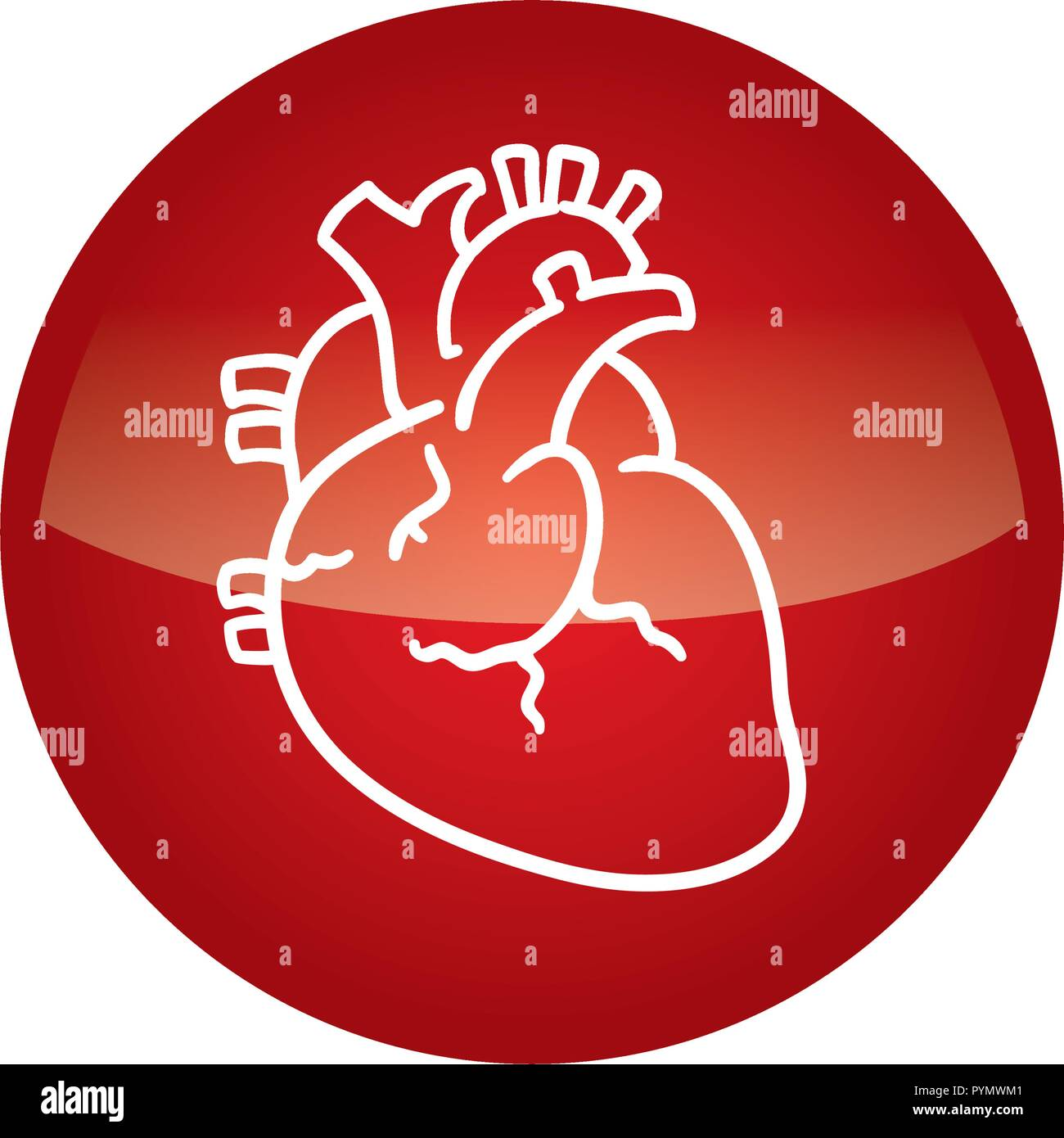 Órgano del corazón humano, diseño de ilustraciones vectoriales icono Imagen De Stock