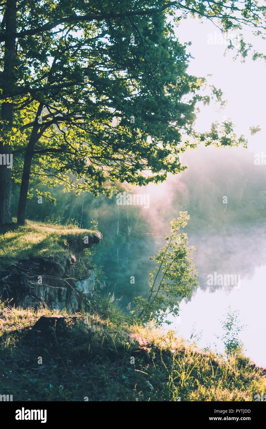 Hermosa mañana soleada. Niebla blanca pone sobre el río. Imagen De Stock