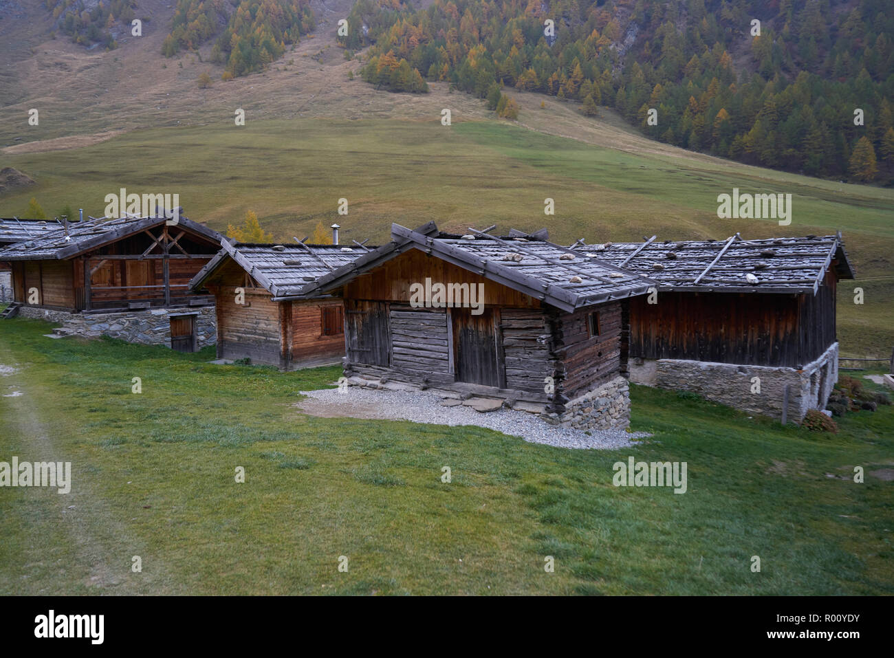 Fane Alm con Pfundigerer montañas, Tirol del Sur, Italia Foto de stock