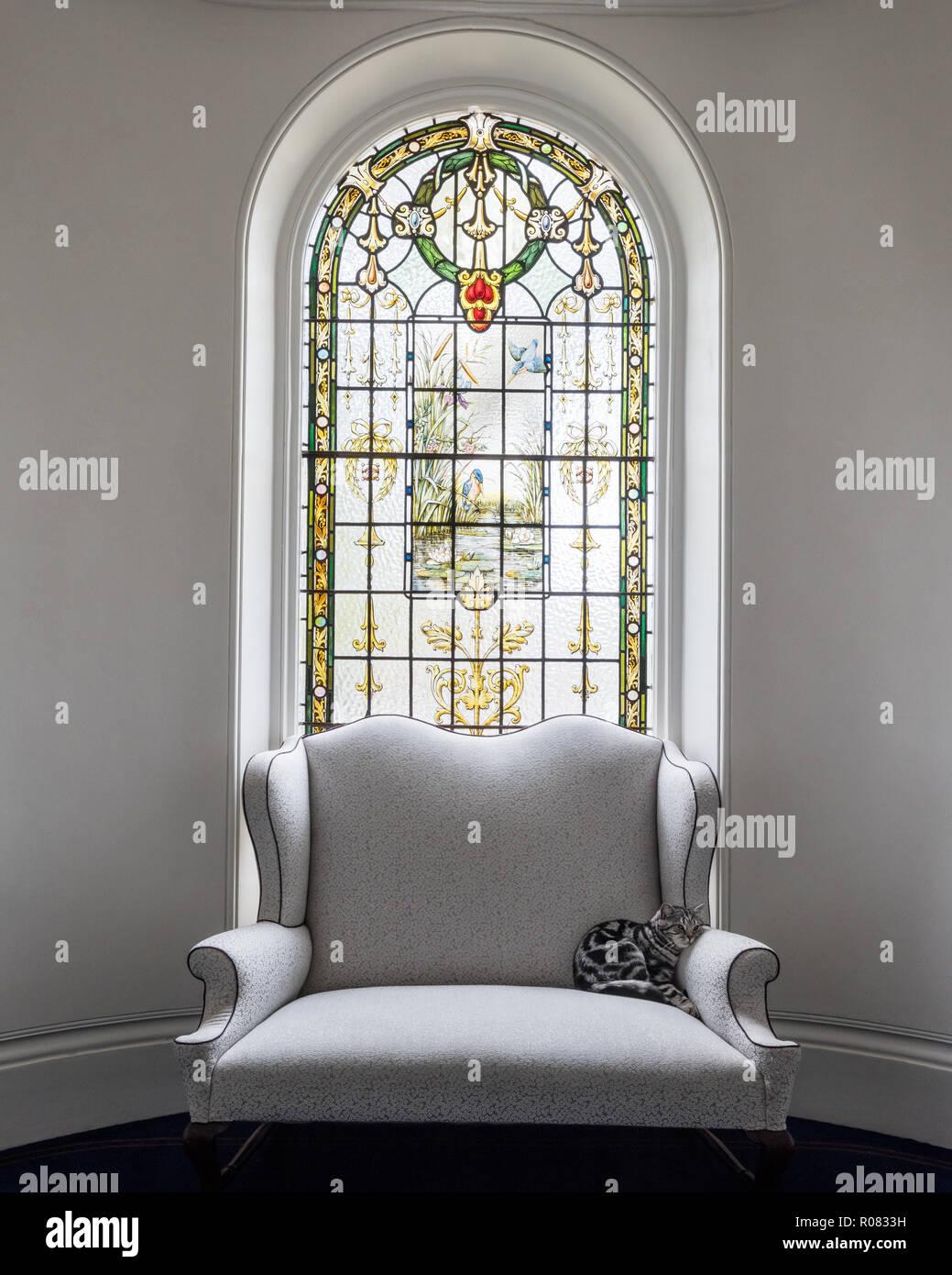 Cat en el sillón por vidriera Foto de stock