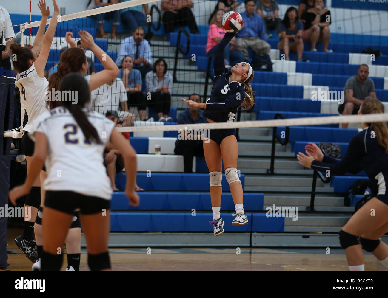 Girls high school juego de voleibol en el gimnasio de una escuela secundaria Imagen De Stock