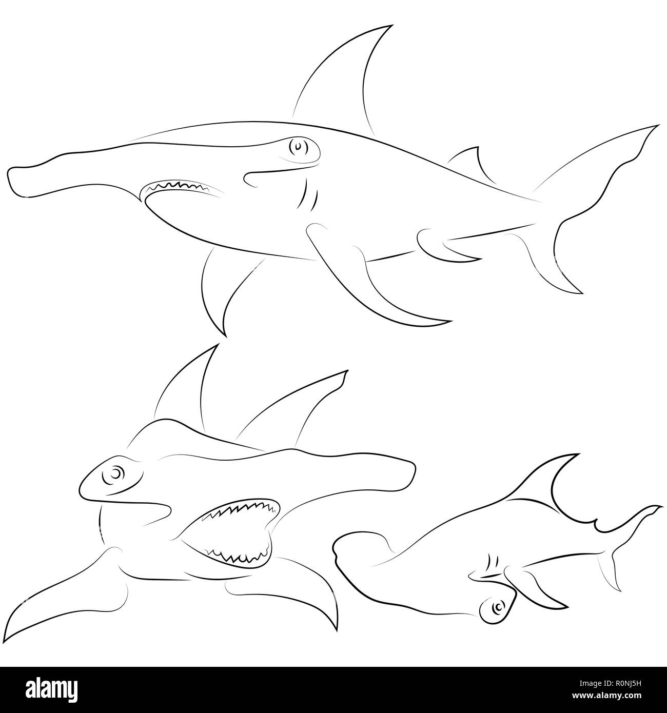 Tiburón Martillo Para Colorear Wwwtollebildcom
