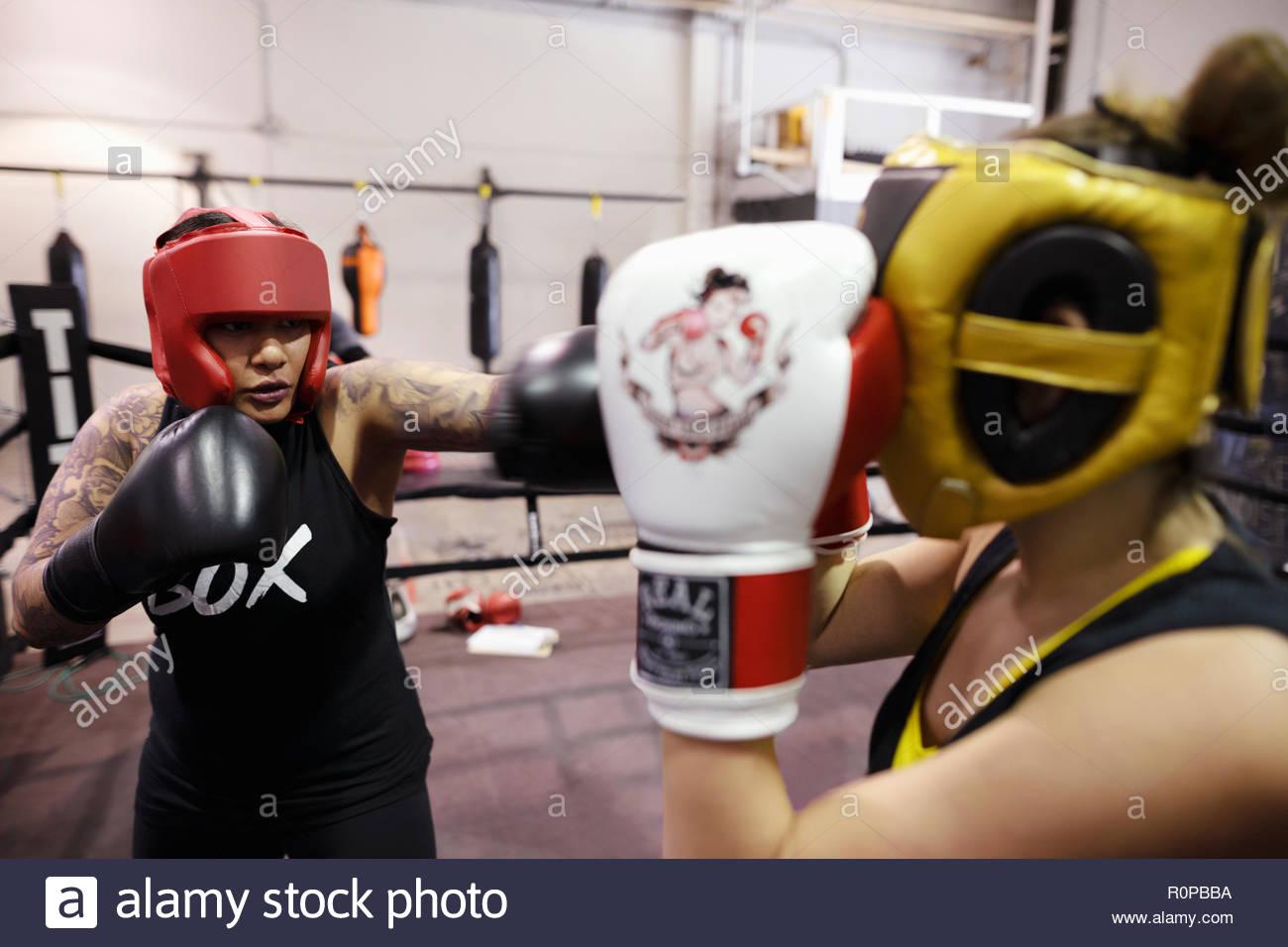 Los boxeadores femenino entrenamiento en el gimnasio Foto de stock