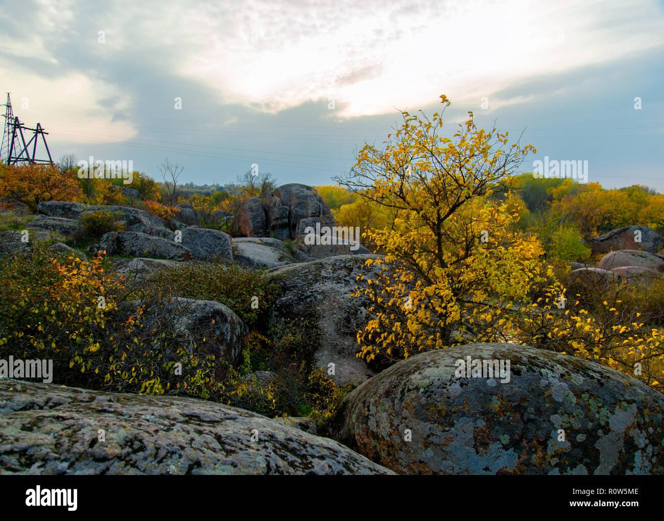 La calma de un remanso del Río Amarillo rodeado de árboles en otoño Foto de stock