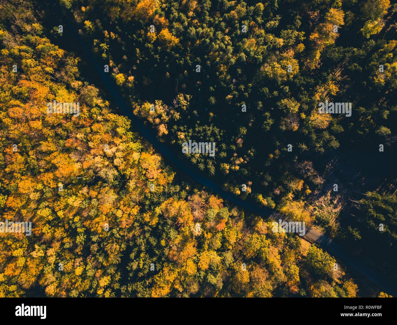 Vista aérea de la carretera en el bosque de otoño, vista desde arriba, drone punto de vista. Temporada Otoño inspirador paisaje del fondo. Foto de stock