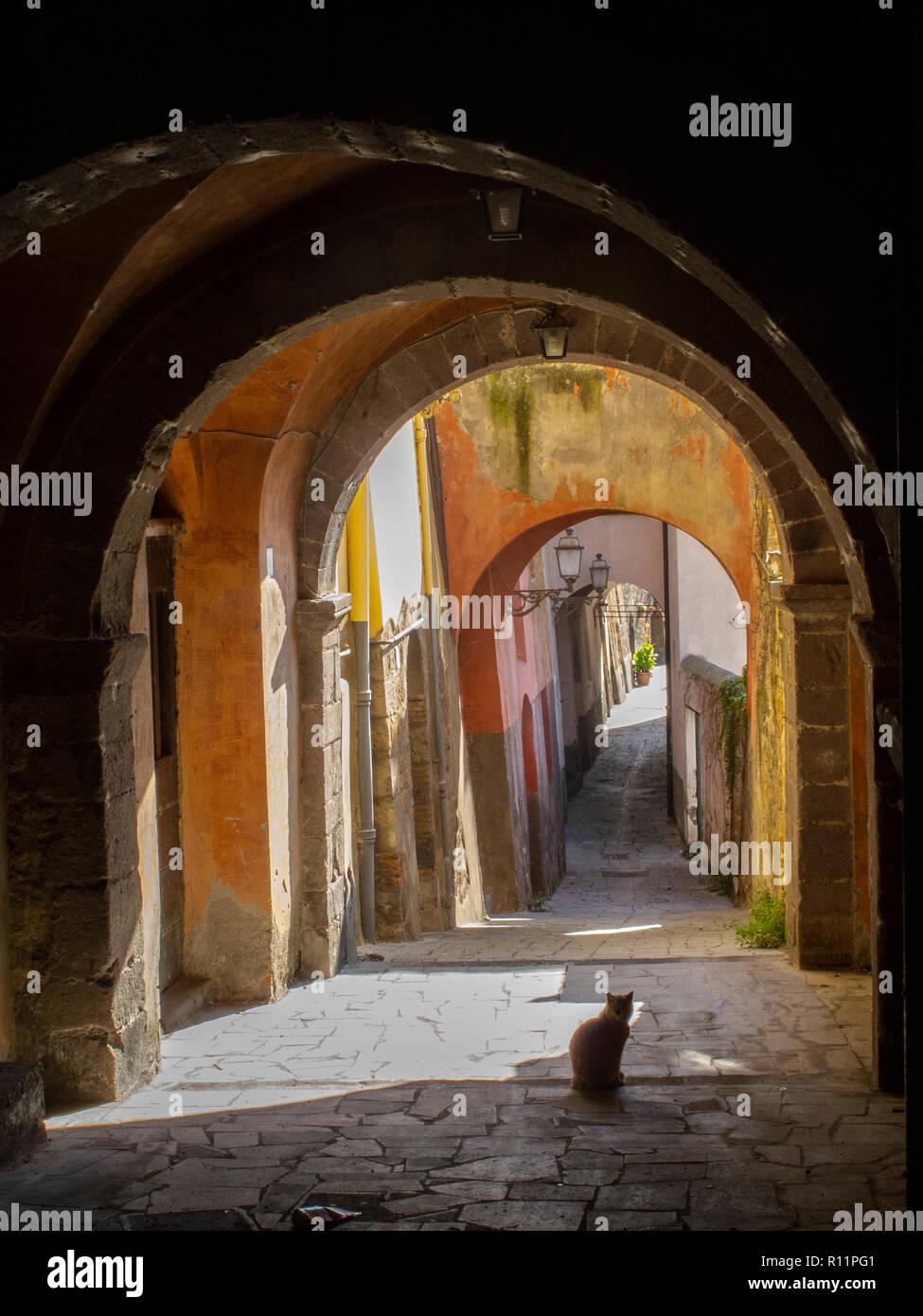 Característico callejón cubierto en el pueblo medieval de Tuscania (Italia) con un gato con retroiluminación. Foto de stock