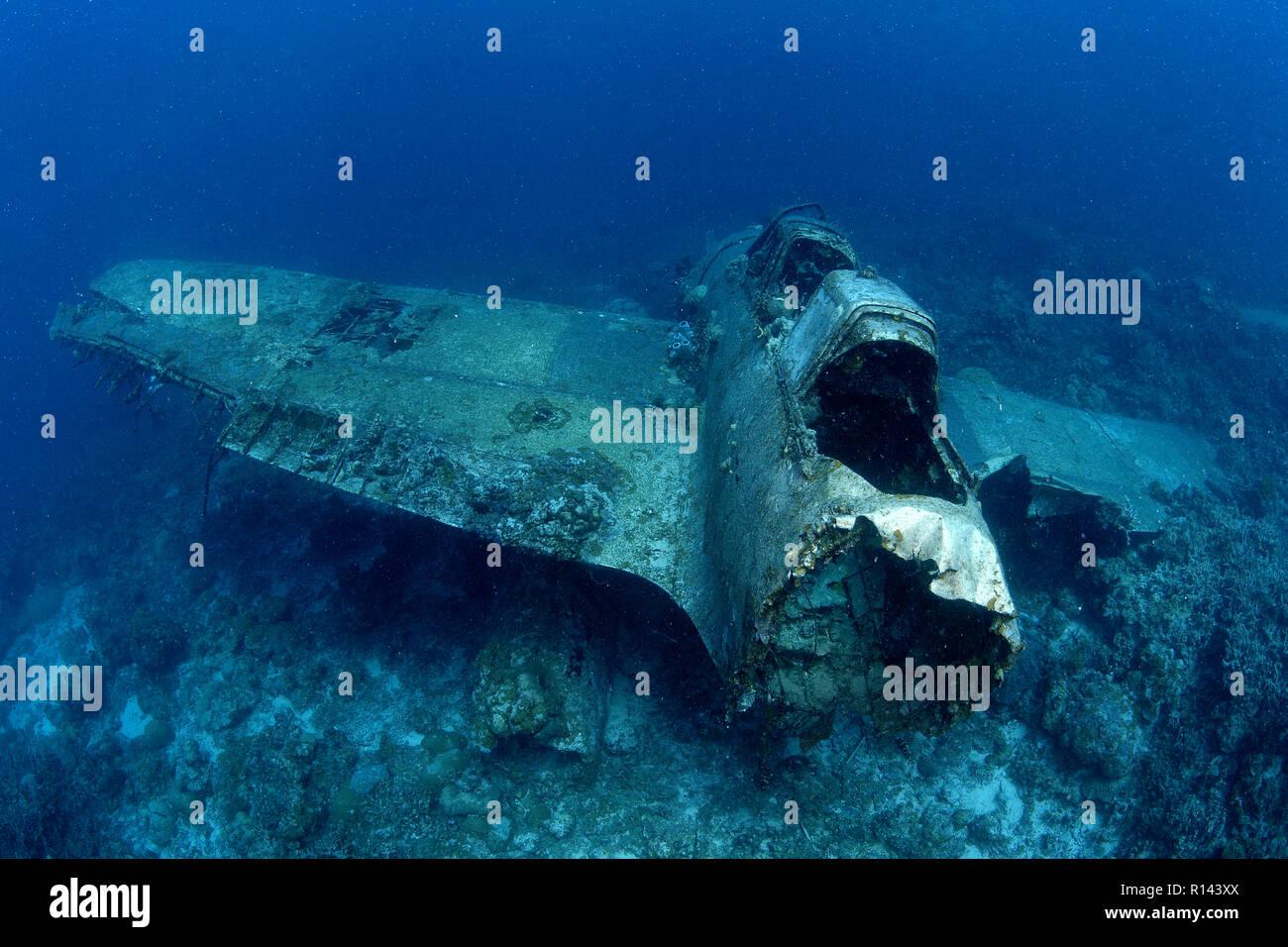 Un americano Zerofighter de WW II en los fondos marinos, Palau, Micronesia Foto de stock