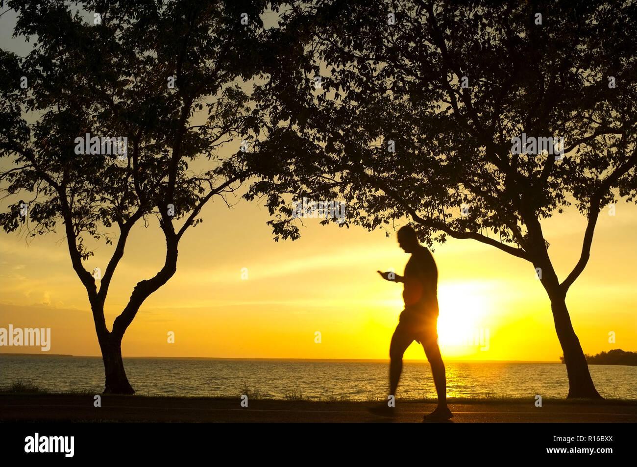 Los árboles y la silueta de un hombre que camina mirando a su teléfono móvil, en contra de un atardecer en la playa . Foto de stock