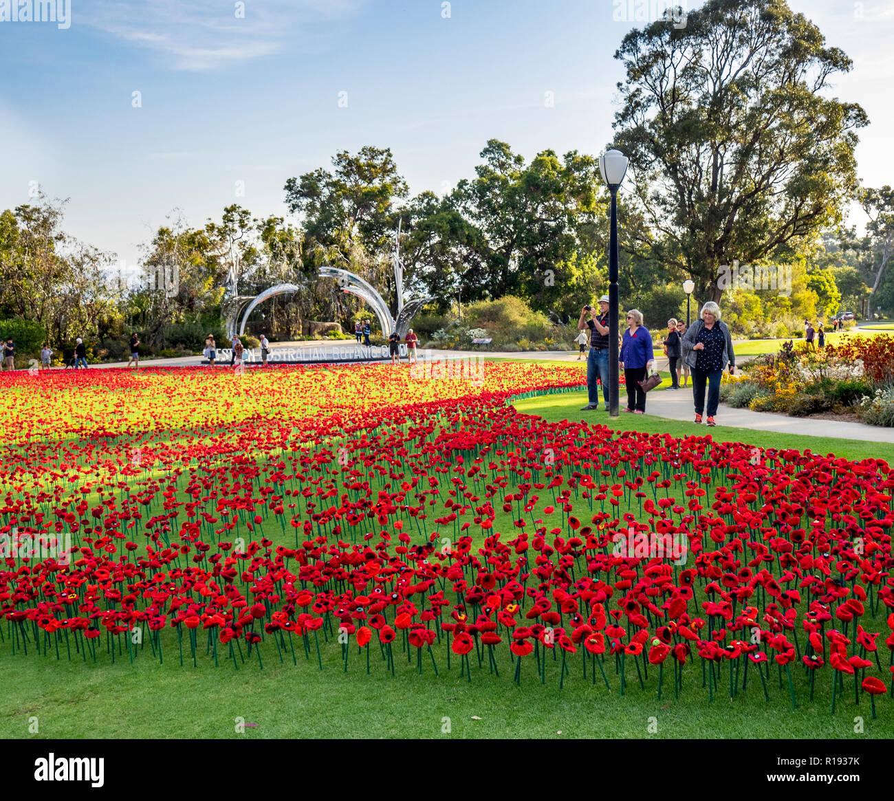 2018 Remembrance Day amapola mostrar Proyecto artesanal de amapola en el Parque Kings Perth Australia Occidental Foto de stock