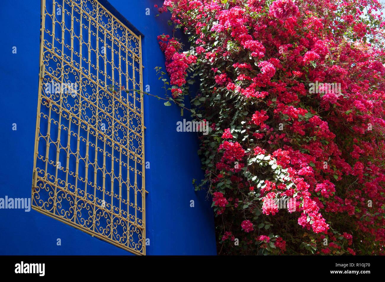 18-04-11. Marrakech, Marruecos. El jardin Majorelle (jardin Majorelle, ) es un dos y medio acres de jardín botánico y jardín paisajista del artista en Marr Foto de stock