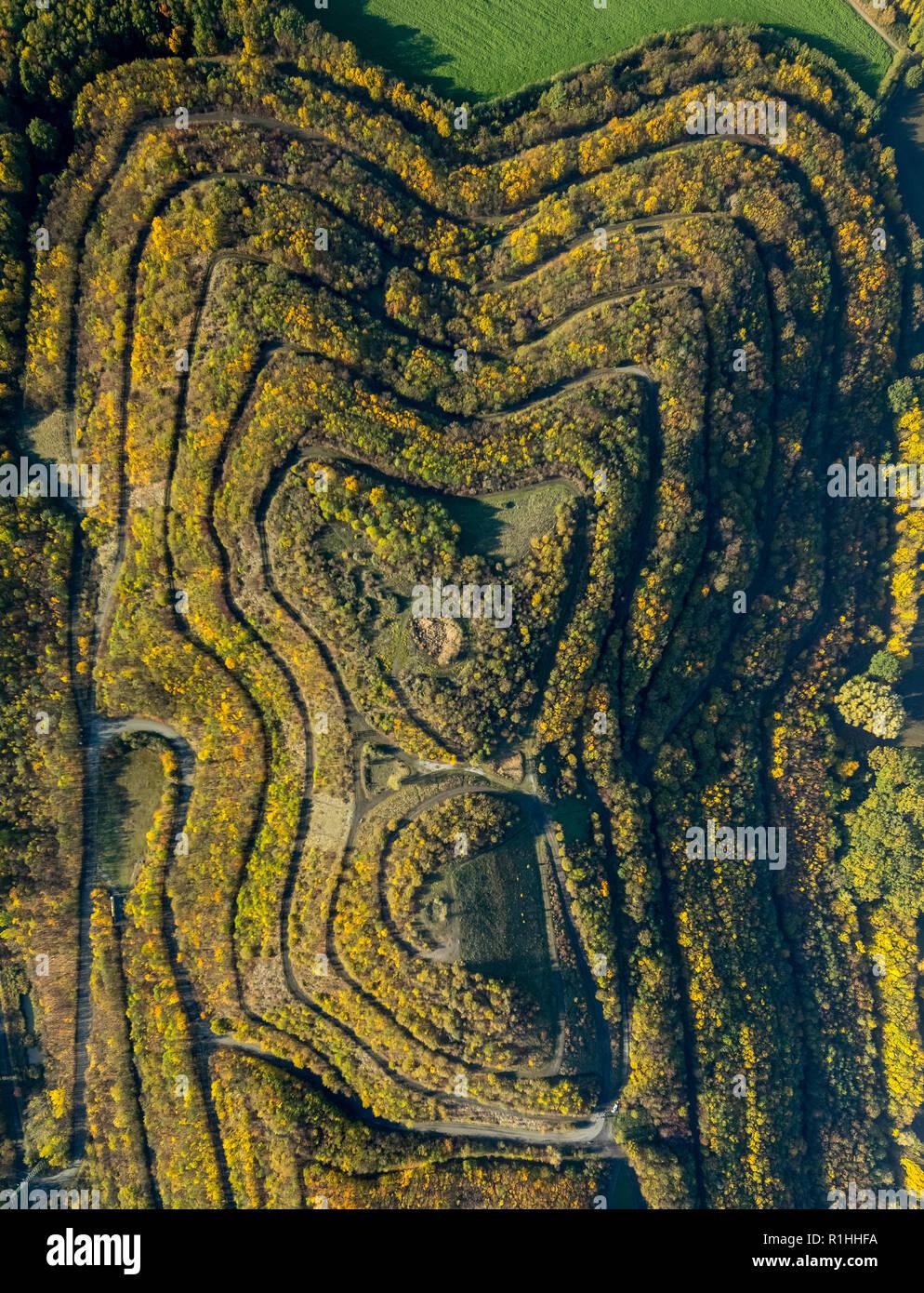 Vista aérea, existencias en altura Herringen Kissinger, caminos, líneas de contorno, líneas de igual altura, senderos, otoño colorido follaje dorado, Octubre, Hamm Imagen De Stock