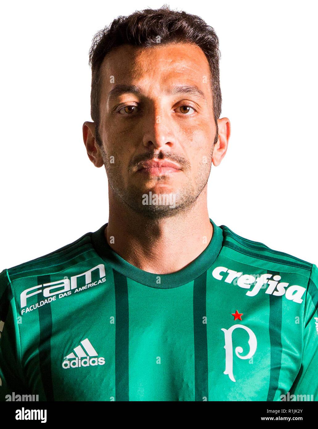 La Liga brasileña de fútbol Serie A 2018   ( Sociedade Esportiva Palmeiras  ) - Eduardo Luis Abonizio de Souza   Edu Dracena   ea1e80a5588c9