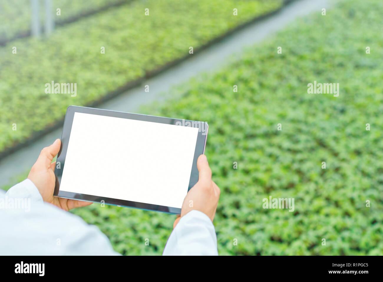 Ingeniero de biotecnología manos con tablet. Gases de fondo. Imagen De Stock
