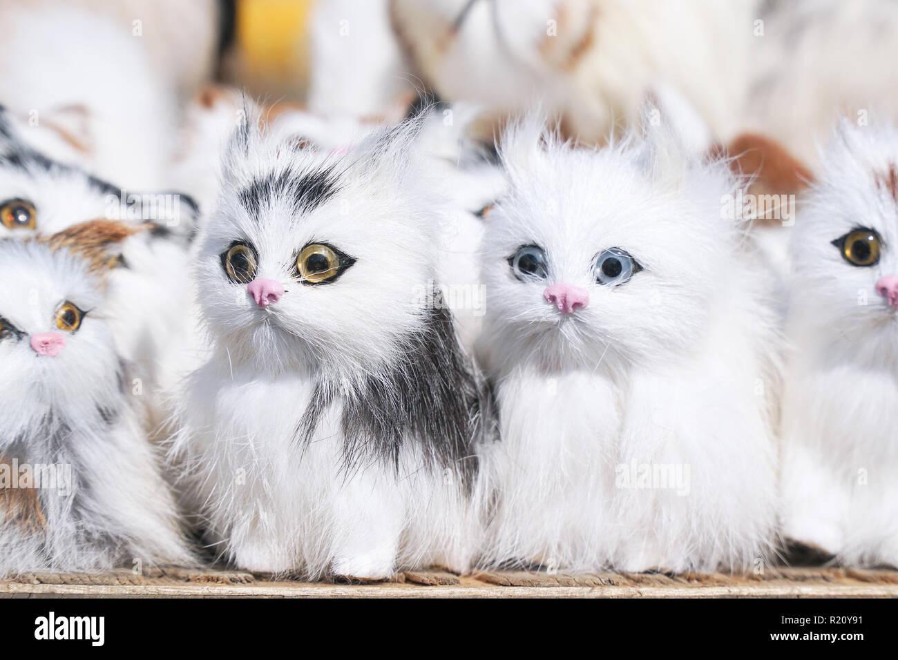 Soft Toys gatitos sentado delante de la cámara. Imagen De Stock