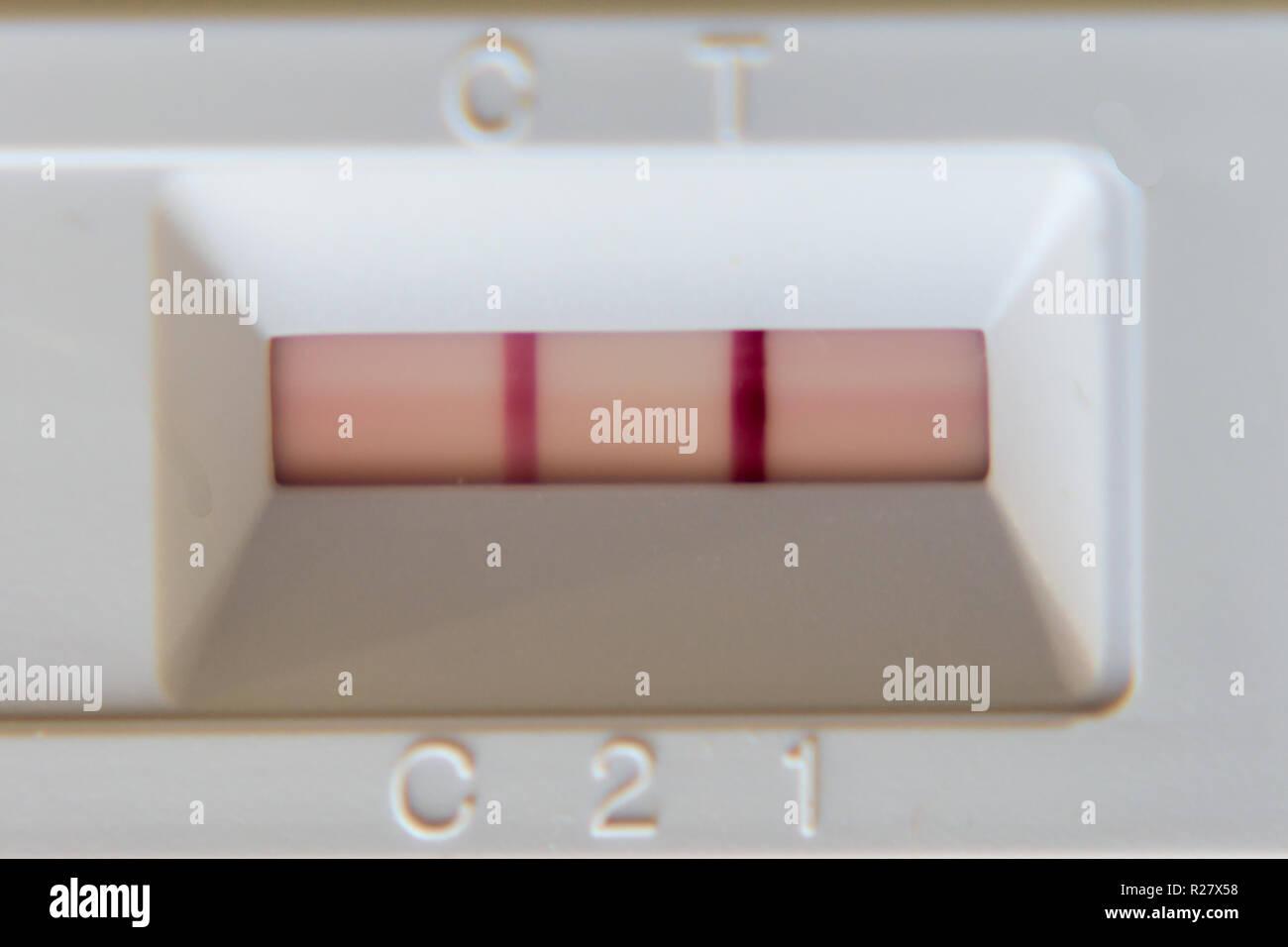Positiv test rápido. Dos líneas rojas. Imagen De Stock