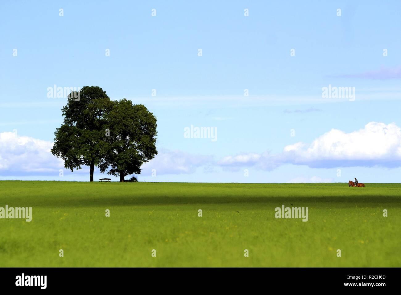Sommerland Foto de stock