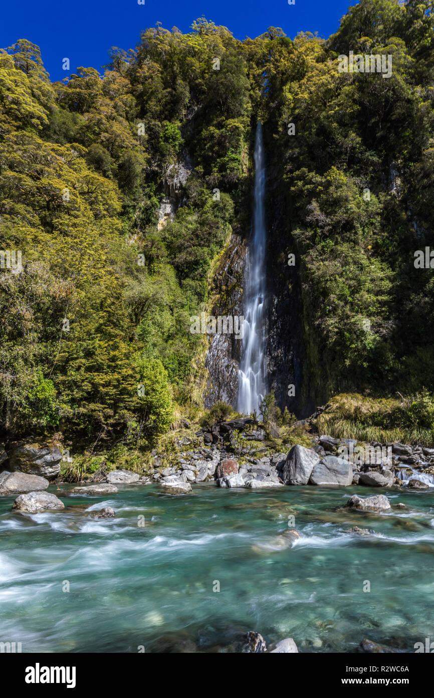Thunder Creek Cascada en el Parque Nacional de Mt aspirantes, Haast Pass, región de la Costa Oeste, Isla del Sur, Nueva Zelanda Foto de stock