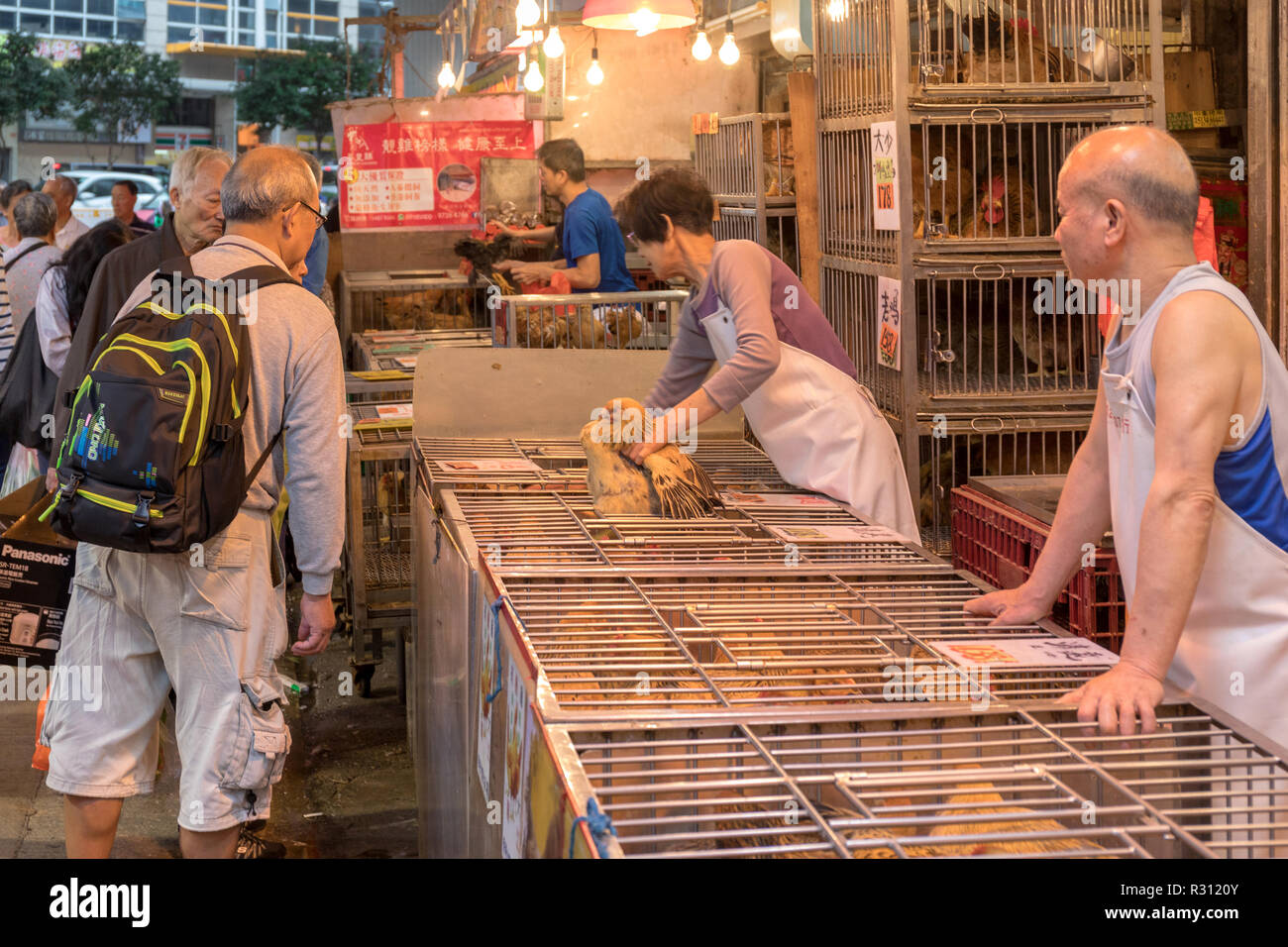 Chicken Chickens Shop Stall Imágenes De Stock   Chicken Chickens ... 422a9b9659b