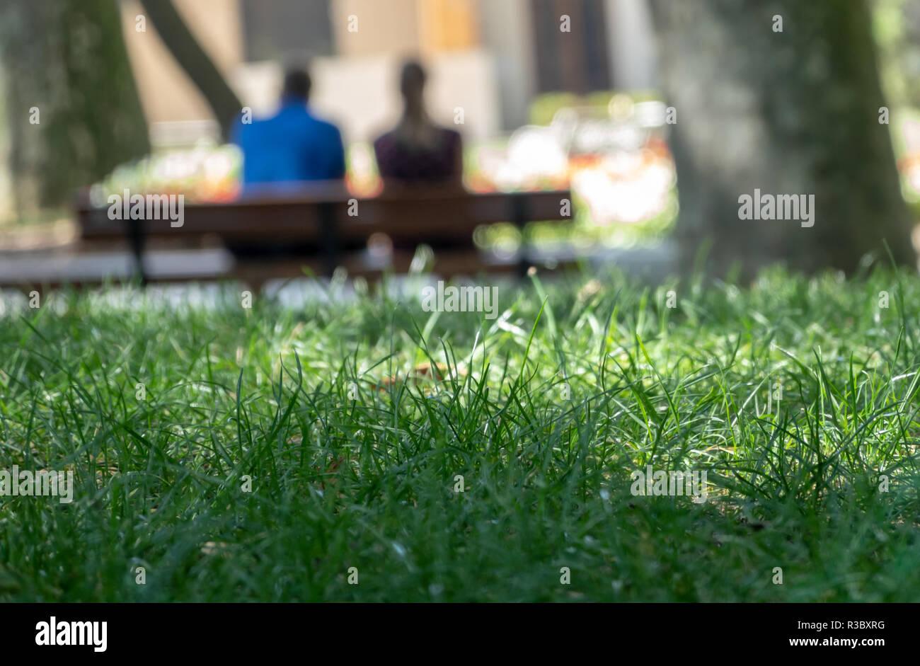 Resumen intencionalmente imagen borrosa de una pareja en un banco por detrás con el verde césped enfocadas en primer plano Foto de stock