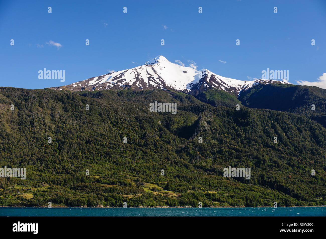 Chile, Patagonia, Lake District. Las pequeñas explotaciones con claros en la selva valdiviana en Seno de Reloncaví. Imagen De Stock