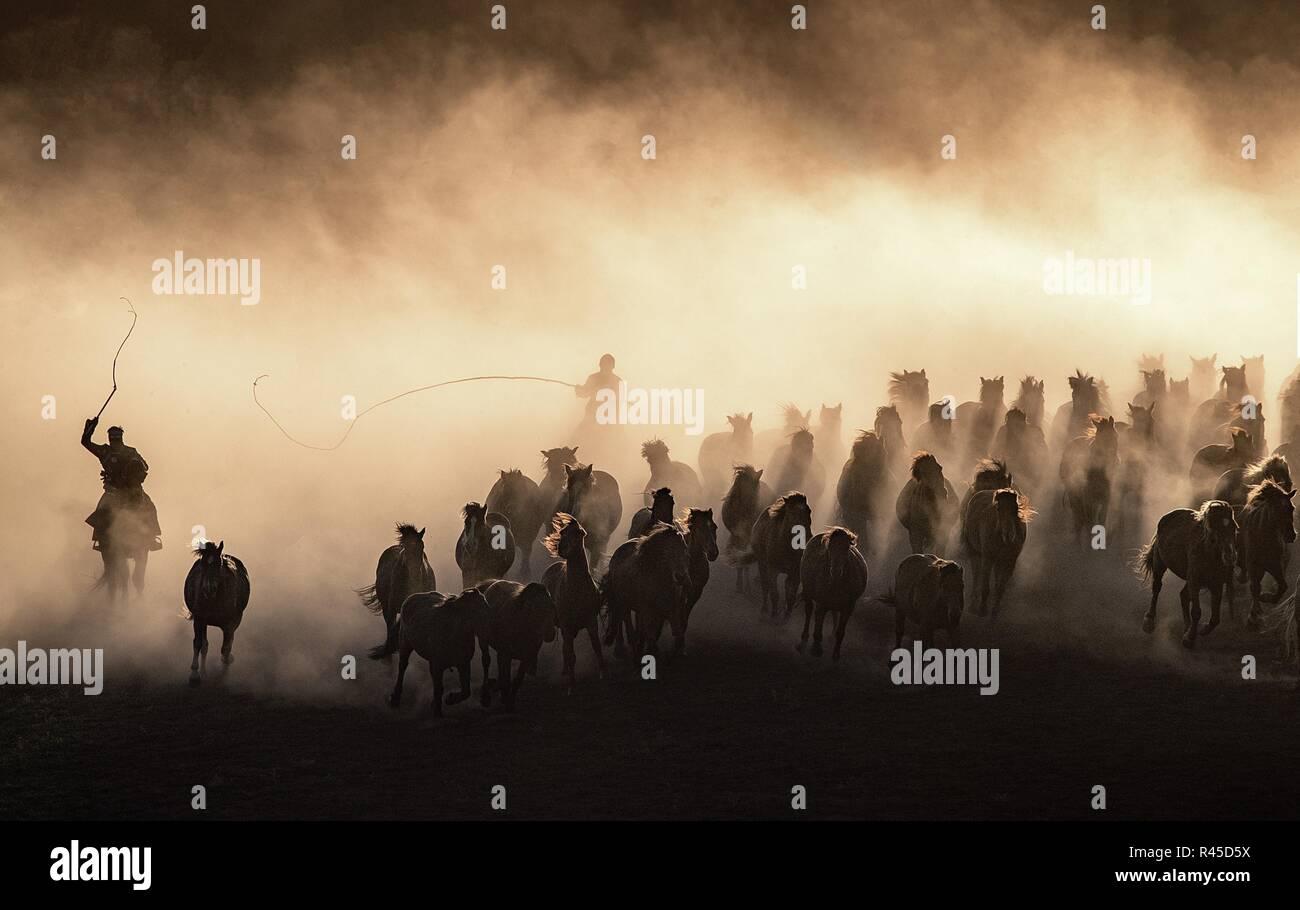 "Chifen, Chifen, China. 25 Nov, 2018. Chifeng, China-caballos corriendo en la pradera de Chifeng, norte Chinaââ'¬â""¢s Mongolia Interior. Crédito: SIPA Asia/Zuma alambre/Alamy Live News Imagen De Stock"
