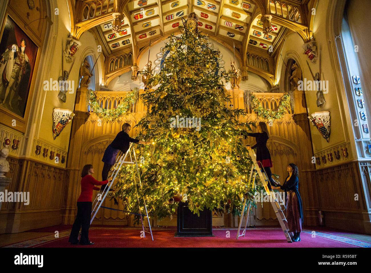 Windsor, Reino Unido. El 30 de noviembre de 2018. Los Apartamentos de Estado en el Castillo de Windsor han sido decorados con brillantes árboles de Navidad y luces parpadeantes para Navidad. Visto aquí en el magnífico St George's Hall un sorprendente 20ft Nordmann abeto del Parque Windsor Great vestido con adornos de oro. Un árbol de Navidad de 15 pies también aparece en la sala de dibujo de color carmesí. Crédito: Mark Kerrison/Alamy Live News Imagen De Stock