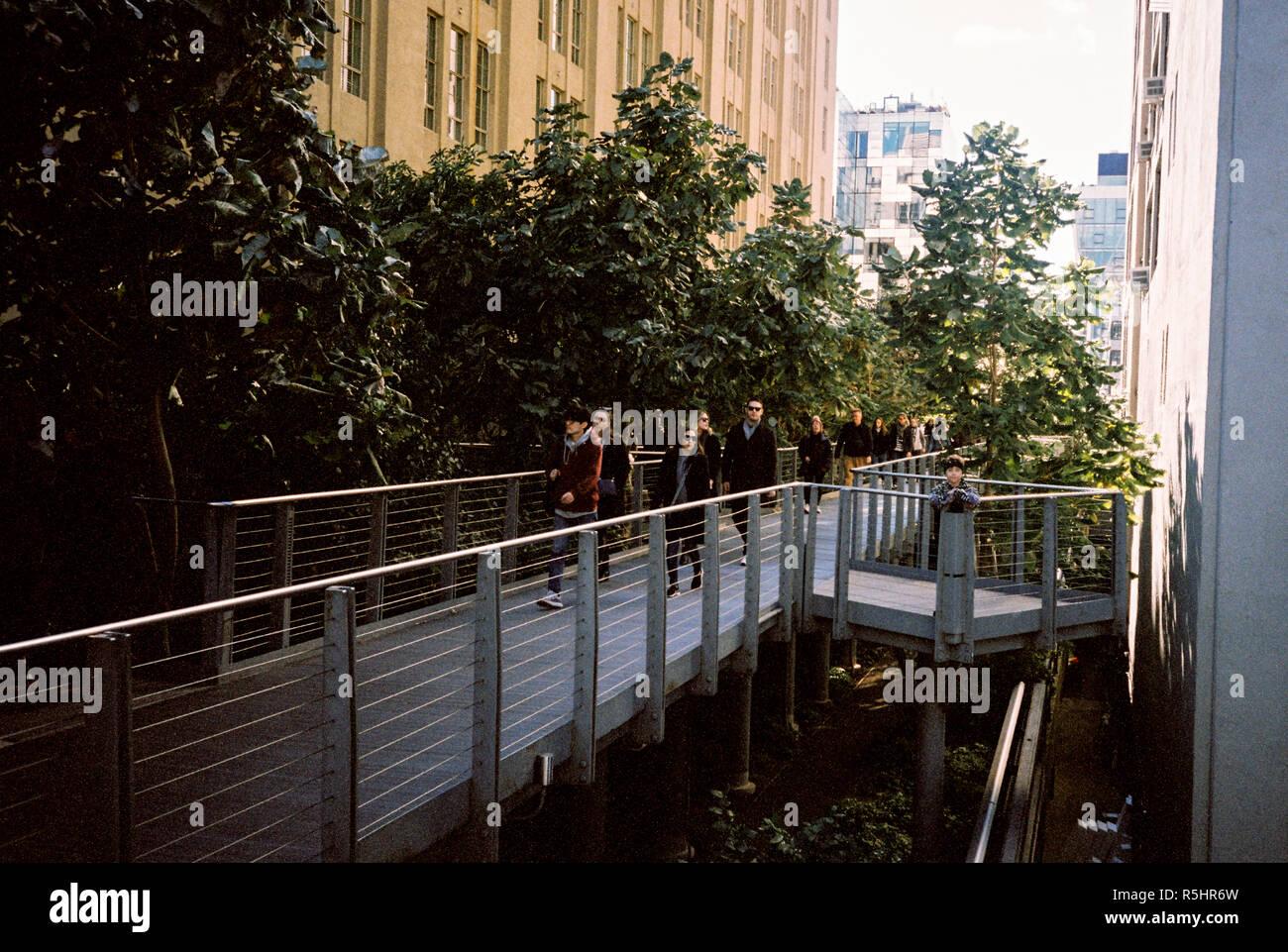 La High Line Park una pasarela construida sobre un antiguo ferrocarril elevado, Chelsea, Nueva York, Estados Unidos de América. Foto de stock