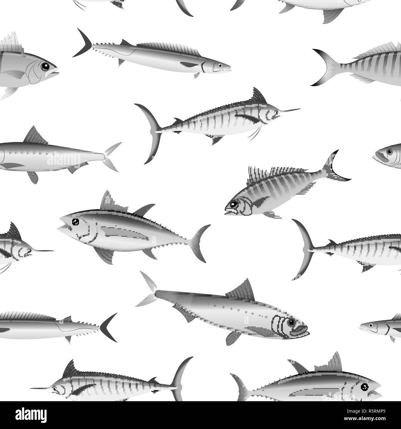 Varios Peces En Blanco Y Negro Patrón Perfecta Ilustración Del