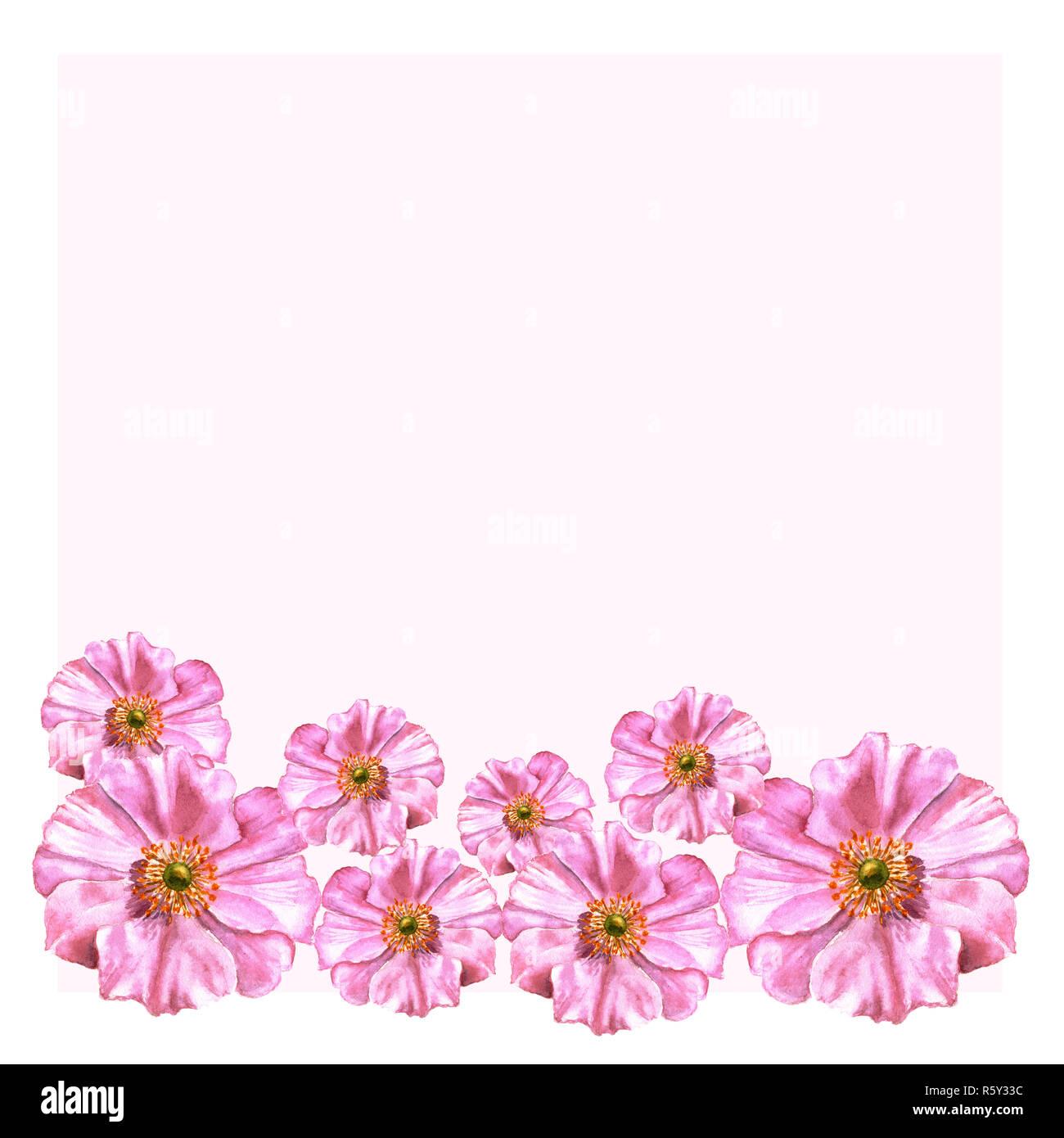 Flores Acuarela Pintada A Mano En Estilo Vintage Anémonas