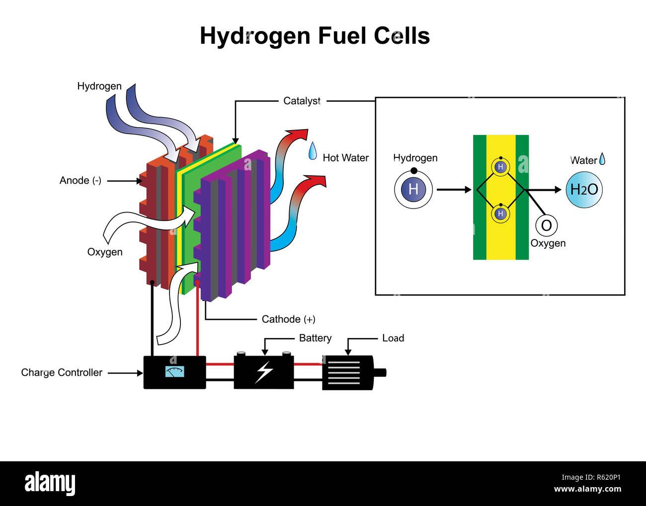 Diagrama de células de combustible de hidrógeno. Imagen De Stock