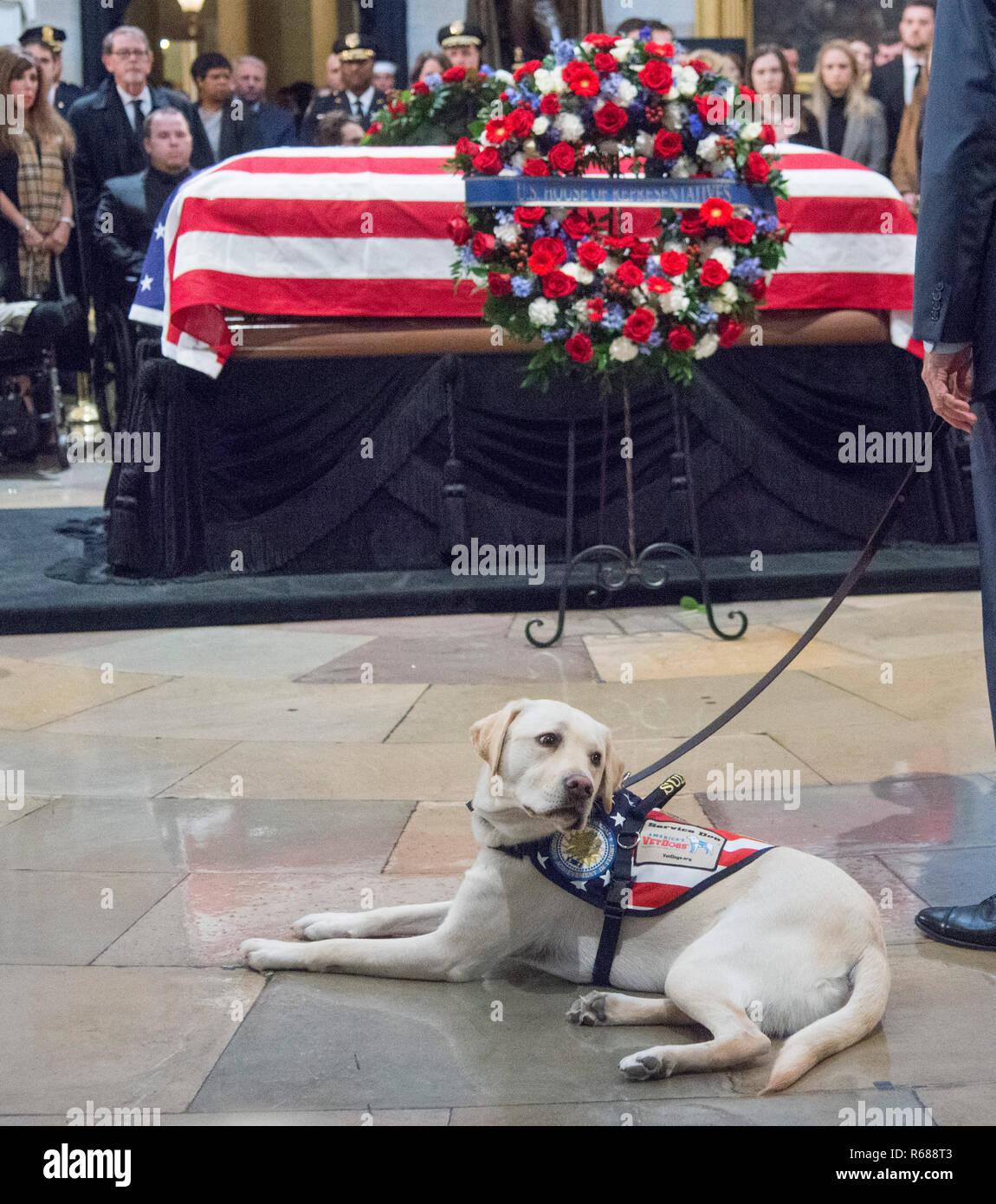 Washington, Estados Unidos. 04 Dec, 2018. Washington, DC, 4 de diciembre de 2018: El ataúd del ex Presidente George H.W. Bush se encuentra en la rotonda del Capitolio de los EE.UU. en Washington DC. Sully, perro de Bush, hizo una breve aparición en la urna. El 41 Presidente falleció el 30 de noviembre de 2018, y será enterrado junto a su esposa e hija en Texas. Crédito: Patsy Lynch/Alamy Live News Imagen De Stock