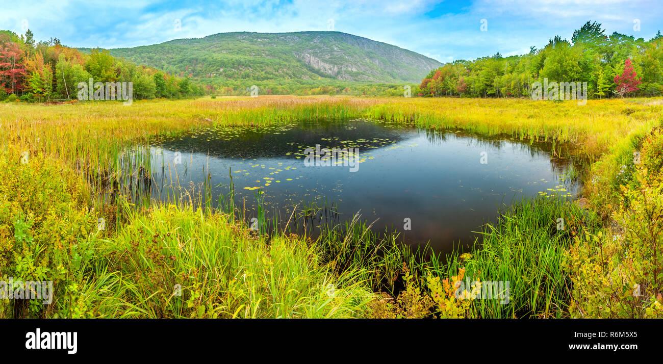 Beaver Dam estanque en el Parque Nacional de Acadia Imagen De Stock