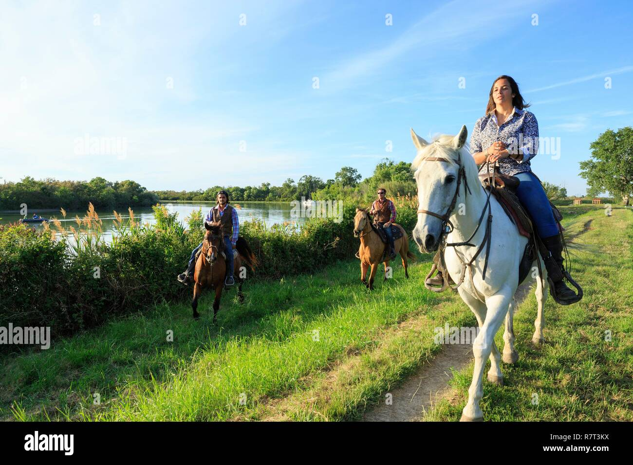 Francia, Bouches du Rhône, Parque Natural Regional de Camarga, Les Saintes Maries de la Mer, La Cavale, paseos a caballo Foto de stock