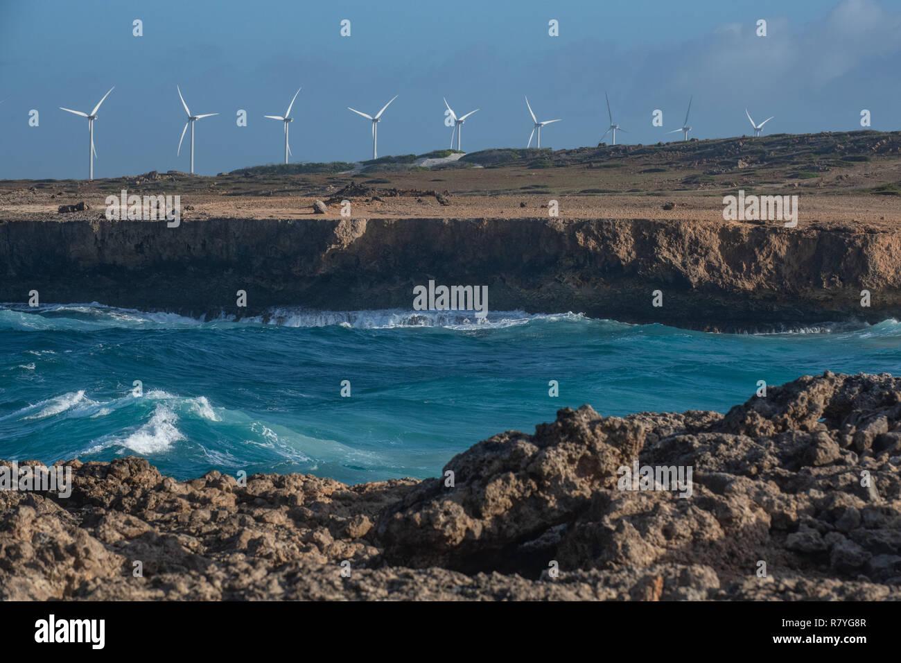 Granja de molinos de viento en el Parque Nacional Arikok Aruba - Esfuerzo de sostenibilidad de la energía eólica: aerogeneradores forman un parque eólico para aumentar las energías renovables Imagen De Stock