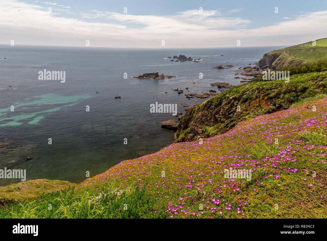 El rocoso, escarpado litoral,y a la sombra de las playas de Cornwall en Inglaterra. Imagen De Stock