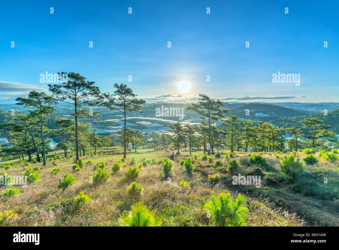 Amanecer en la meseta cuando el sol despertó al bosque de pinos por debajo de la colina para dar la bienvenida al nuevo día en paz. Foto de stock
