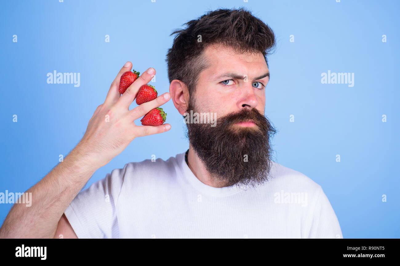 El hombre barba hipster fresas entre los dedos de fondo azul. Contenido de carbohidratos fresa. Fresas fruta más segura para los niveles de azúcar. La mayoría de los carbohidratos la glucosa fructosa sacarosa. Imagen De Stock