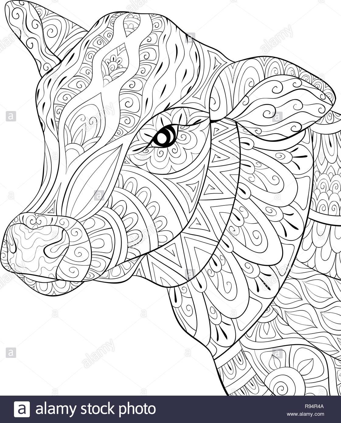 Una Linda Cabeza De Vaca Con Ornamentos Imagen Para Actividad