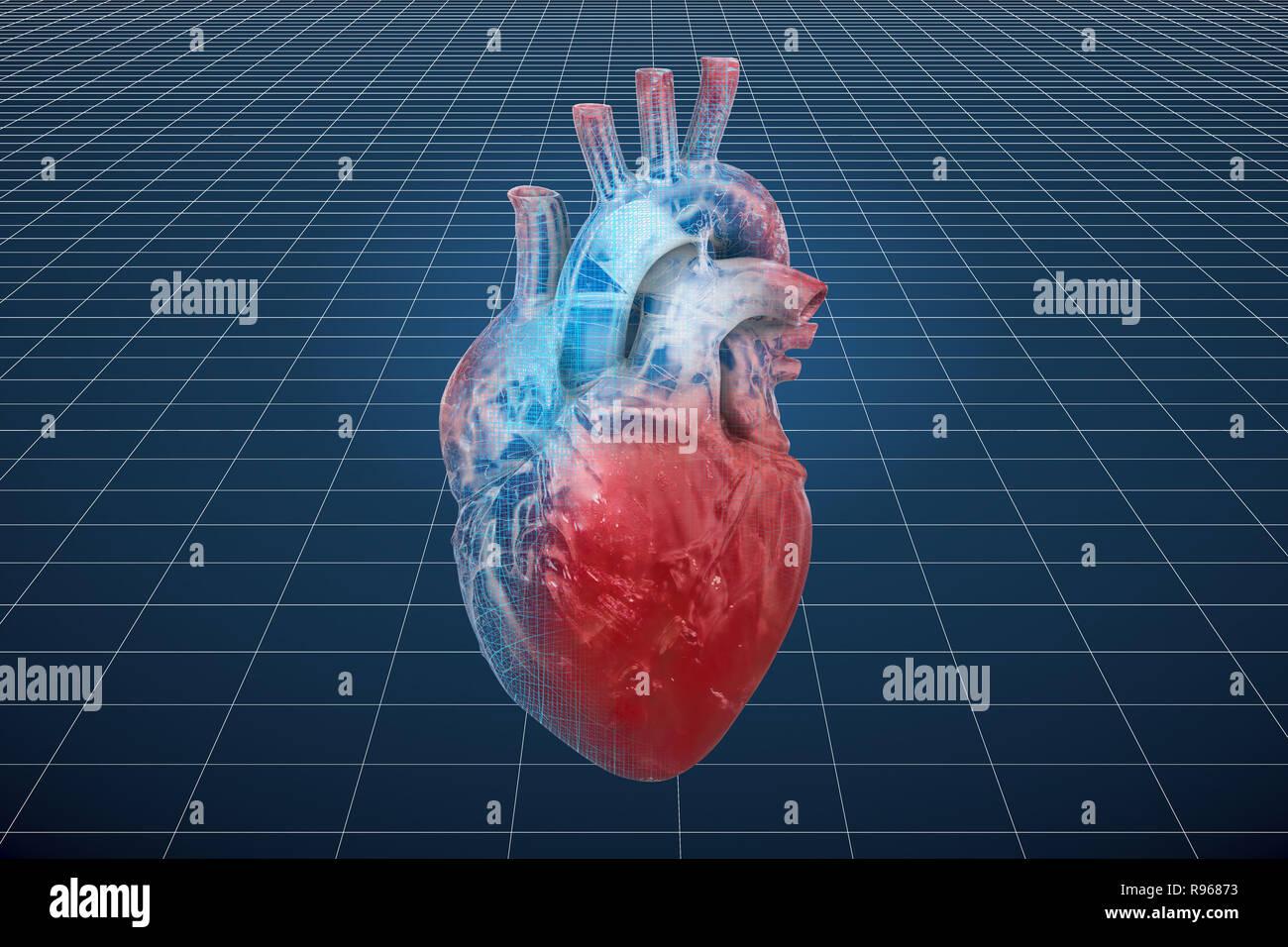 eb940eada2e0 Visualización de modelos CAD en 3D del corazón humano